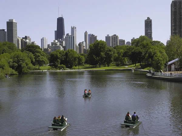 Paddle boating beneath Chicago's skyline