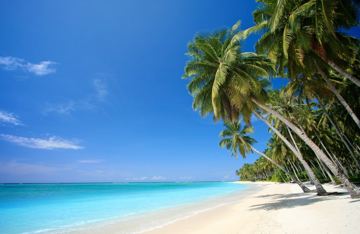 top things to do in the bahamas